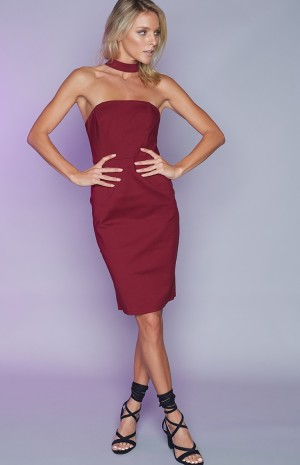 wine-strapless-dress-153
